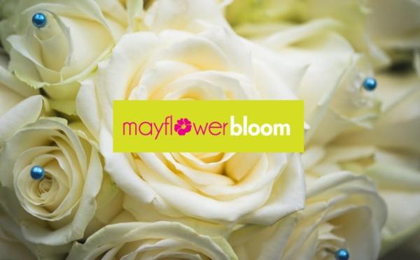 Mayflower Bloom Limited
