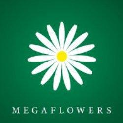 Mega Flowers