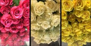 Melbourne South East Florist