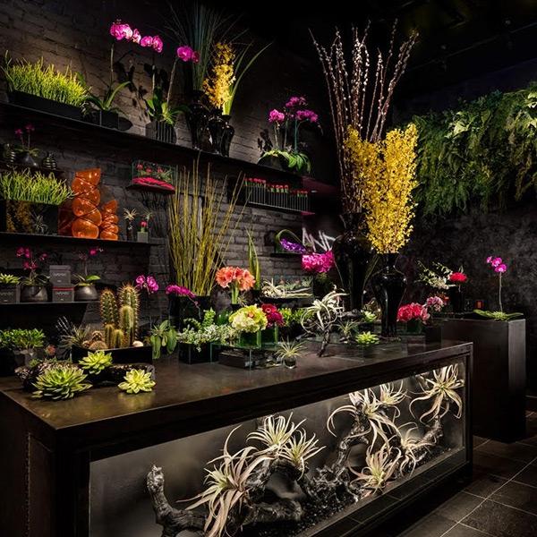 minoos florist