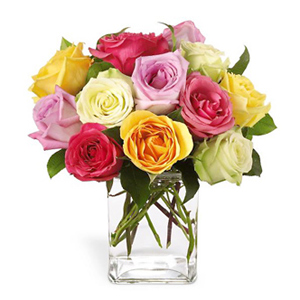 Mixed Color Roses #4107X