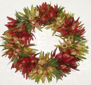 Mixed Leucodendron Wreath