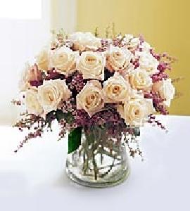 Montecito White Roses
