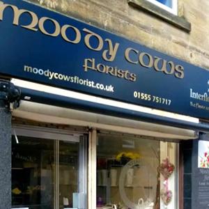 Moodycows Florist