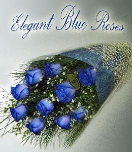 One Dozen 60cm Blue Roses