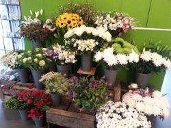 Ooh La La Flowers- Designs by Lucie