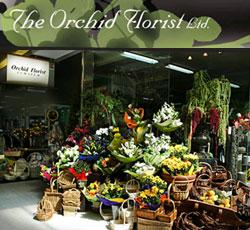 Orchid Florist 2020 LTD