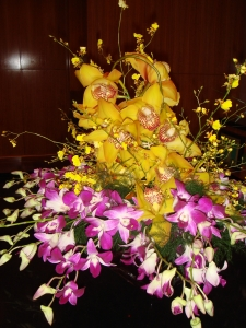 Orchids Selebration
