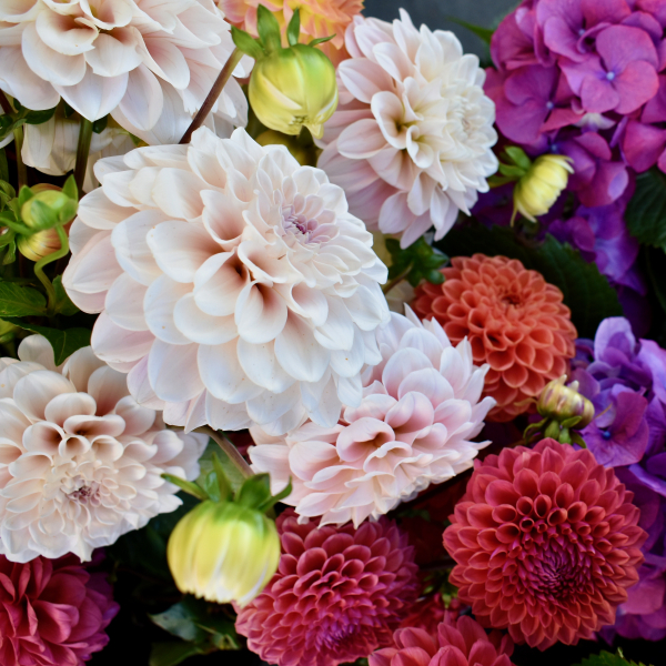Pepperberry Florist