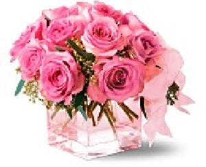 Pink On Pink Roses