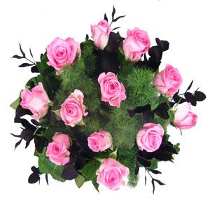 Pink Rose Blush
