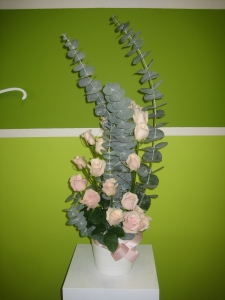 Pink Rose Spiral