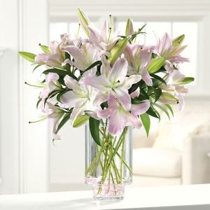 Pink & White Lillies