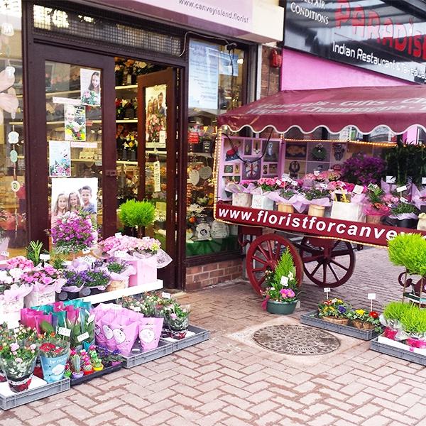 Plantwise Florist