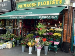 Primrose Florists