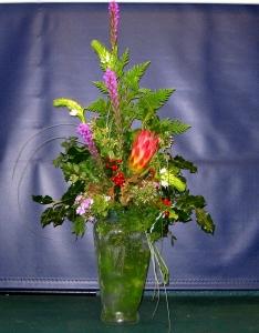 Protea Surprise