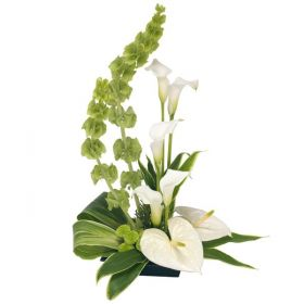 Pure & Simple Corporate Flowers