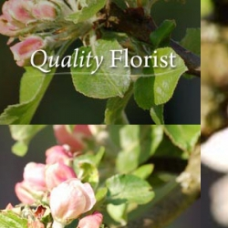 Quality Florist