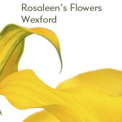 Rosaleens flowers