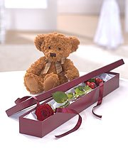 Rose & Teddy Gift Set