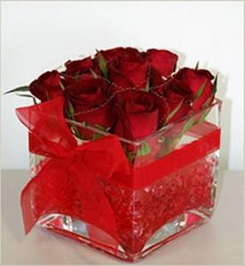 Roses In Gel