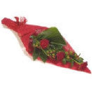 Roses/
