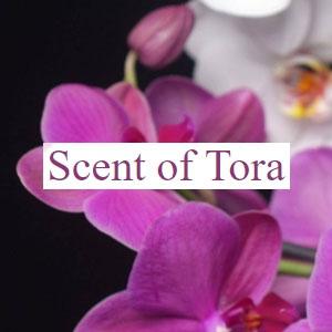 Scent of Tora
