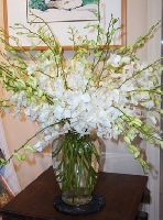 Showy Orchid Arrangement