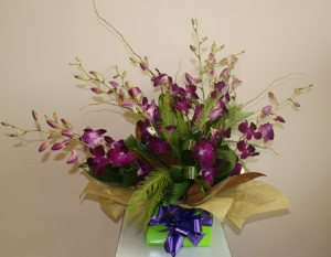 Singapore Orchid Box Arrangement