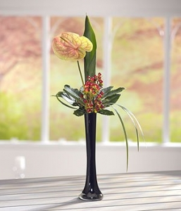 Single Flower In A Vase