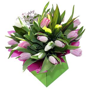 Spring Tulips For Mum