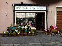 Stalks and Stems Florist