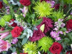 Stems Florist