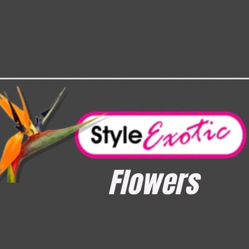 Style Exotic