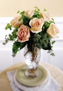 Sun Blushed Roses