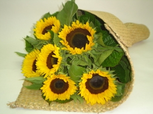 Sunflowers In Flax Wrap