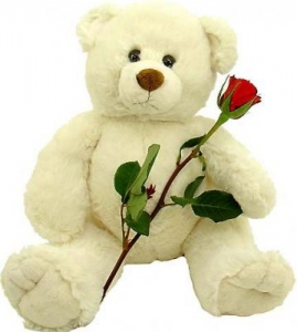 Sweet Love Teddy + 6 Roses