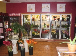 The Enchanted Florist - Orland Park