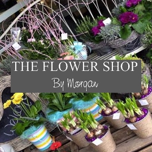 The Flower Shop by Morgan