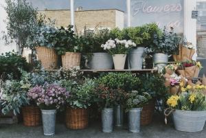 The Fresh Flower Co