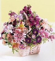The FTD Color Harmony Bouquet