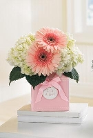 The FTD® Sweet Dreams Girl® Bouquet