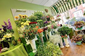 The Garden Shop Florist