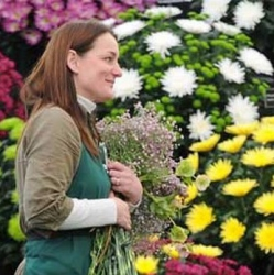 The Lily Pad Florist