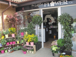 The Little Flower Company