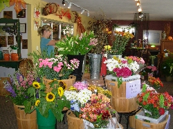 Troy Flower and Gift Shop