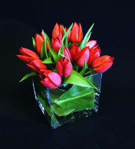 Tulip Cube