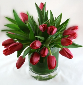 Tulips And Ti Leaves