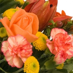 Tullow Florists