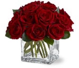 Twelve Red Roses Contemp